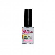 Акварель корректор (прозрачная жидкость) Nails Molekula 6 мл